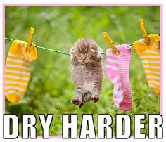 Even when life socks