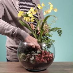 How to make a terrarium in a fish tank? Succulent Gardening, Planting Succulents, Planting Flowers, Succulents Painting, Succulents Wallpaper, Succulents Drawing, Indoor Succulents, Propagating Succulents, Succulent Wall