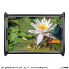 Une grenouille sous une fleur de nénuphar Aquarium, Cool Stuff, Painting, Animals, Art, Tray, Flowers, Aquarius, Cool Things