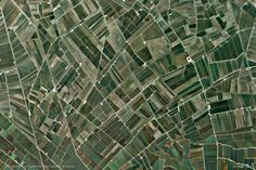Amposta Spain, crop pattern, Google-Earth-view-1196