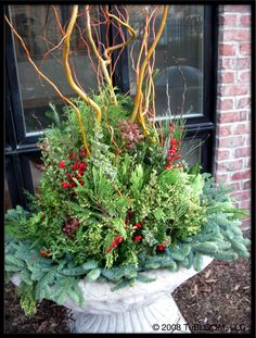 1000 images about for my terrace on pinterest condo for Garden design winter 2018