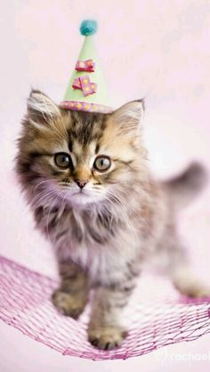 Downright adorable ♥♡♥