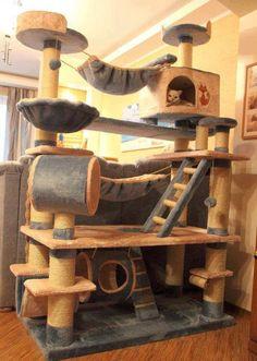 Encantado mundo de arranhadores...sonho de consumo de toda gateira!     Já comprou um arranhador e seu gato não deu à mínima? Você...