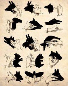 Sombras con las manos: niños practican coordinación óculo - manual, lateralidad, entienden ejercicios de improvisación #danza #creatividad sombra vs espejo