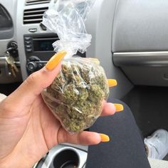 Weed Online Supplier is a fast and discreet place to Buy Marijuana/ Buy weed /Buy cannabis at affordable prices within USA and out of USA.Get the best with us as your satisfaction is our website at www. call/text/whatsapp at 978 Cbd Oil For Sale, 420 Girls, Puff And Pass, Buy Weed Online, Cannabis Oil, Smoking Weed, Stoner Girl, Ganja, Hemp Oil