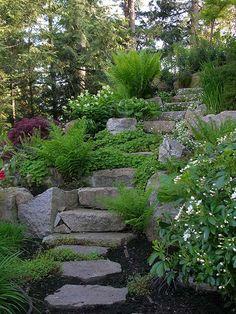 Aloe Designs Is A Vancouver, BC Garden Design Group That Creates Outdoor  Living Spaces.