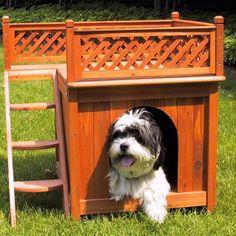 Caminhas e casa para cães e gatos