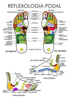 reflexologia-podal-mapa1.jpg (550×777)