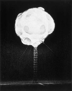 In mid-20th Century, the US was testing nuclear weapons. A man named Harold Edgerton developed a camera that could snap a picture a billionth of a second after the moment of detonation. These haunting and beautiful images are just some of the photos he captured.