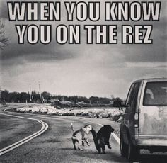 You know you're on the Rez when...