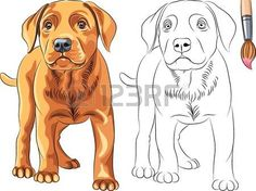Labrador with Puppies coloring page from Dogs category. Select ...