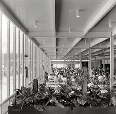 "Circa 1957. ""IBM Manufacturing and Administrative Center, Rochester, Minnesota. Cafeteria"