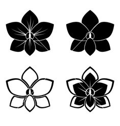 Orchid silhouettes vector