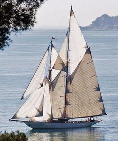 Sailing a Schooner Sailing Cruises, Sailing Ships, Sailing Yachts For Sale, Sailing Boat, Yacht Boat, Ski Nautique, Cruise Italy, Classic Yachts, Boat Art