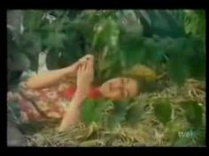 Gaviota, the great song from the famous Colombian telenovela Cafe con Aroma de Mujer