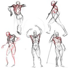 Analytical figure drawing — Male anatomy drawing references for artists