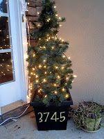 Tomato Cage Porch Christmas Trees!  Brilliant!
