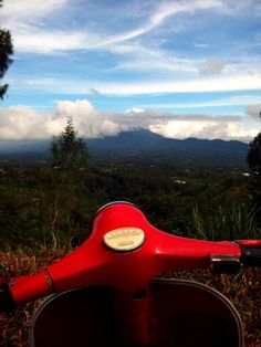 Vespa go to forest. Get your fresh mind.