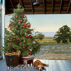 Outside evergreen trees with ...Strings of gold lights and large ornaments offer a warm welcome, simple pinecone ornaments are a festive nod to the surrounding trees. 20 Charming Coastal Christmas Trees   Season's Greetings   CoastalLiving.com