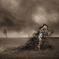 (JH-011) - Jennifer B. Hudson: Transgression