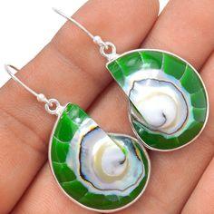 Nautilus Shell 925 Sterling Silver Earrings Jewelry SE119644 | eBay