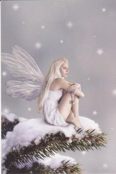 angel, magic, fantasi, fairies, faeri, snow fairi, digital art, winter fairi, snowfairi