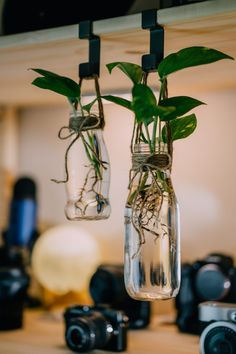 Do you like to hold on to glass jars you get from buying certain items at the grocery store? Learn ways to reuse glass jars at home to help go zero-waste. Hanging Jars, Hanging Plants, Indoor Plants, House Plants Decor, Plant Decor, Crafts With Glass Jars, Small Glass Jars, Glass Jar Decorations, Diy With Glass Bottles