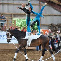 Jersbek-Wohldorfer Reit- und Voltigiervereins Trick Riding, Vaulting, Awesome Stuff, Equestrian, Horse, Dance, Outdoor Decor, Horseback Riding, Dancing