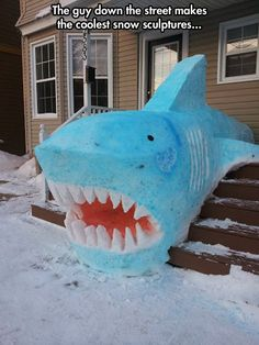 Nice jaws  // funny pictures - funny photos - funny images - funny pics - funny quotes - #lol #humor #funnypictures