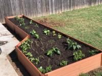 Frame It All 48 In W X 48 In L X 5 5 In H Brown Composite Raised Garden Bed At Lowes Com Raised Garden Raised Garden Beds Garden Beds