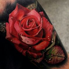 These 49 rose tattoo designs and ideas are really amazing. Find your inspiration with our gallery of rose tattoos on shoulder, sleeve, arm or hand. 3d Flower Tattoos, Beautiful Flower Tattoos, Flower Tattoo Designs, Tattoo Designs For Women, Floral Tattoos, Beautiful Flowers, Forearm Tattoos, Body Art Tattoos, Sleeve Tattoos
