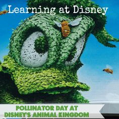 Special learning experiences available at Animal Kingdom ~~ Learning While at #Disney - Pollinator Day #activitiesforkids at #AnimalKingdom