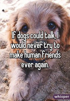 If dogs could talk, I would never try to make human friends ever again.
