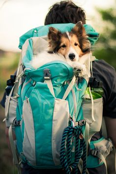 Backpacking with Daddy