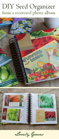 Convert a photo album into a snazzy new seed organiser - such a fun, useful, and cute project!