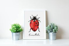 #autumn #earth #fall #illustration #illustrator #insect #printshop #etsy #coccinellidae #vintage #watercolor #watercolour #home #homedecor #homemade #ladybug #nature #animals #nature #botanic #naturephotography #insects #inspiration #botanicalgarden #wood #colorful #handmade #paint #micro #motivational