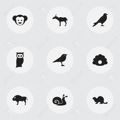 Set Of 9 Editable Zoo Icons. Includes Symbols Such As Escargot, Bison, Eagle And More , Bison, Art Designs, Graphic Art, Eagle, Symbols, Fictional Characters, Ideas, Art Projects, Fantasy Characters