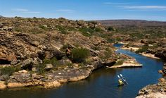 When can we go??!!Canoeing on the river at Bushmans Kloof Nature reserve a 3 hour scenic drive from Cape Town