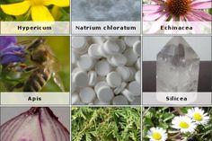 Homeopatia: uma alternativa segura a vacinas e remédios alopáticos | #Alopáticos, #Homeopatia, #Medicamento, #MedicinaAlternativa, #Natureza