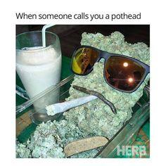 when someone calls you a pothead