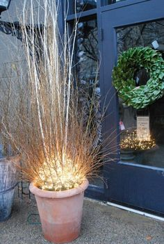 Rob's constructions of branches and lights recasts the tree as a burning bush.  It would look great inside or out.  With ornaments, or without. (outdoor porch lights planters)