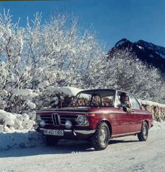 bmw 2002 - the only car i ever want to own