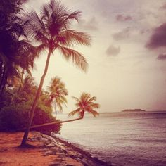 Sunset bay... | Flickr – Condivisione di foto!