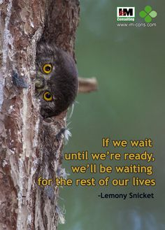 Now, or tomorrow will be late! #quotes #IMC #IMConsulting #motivation #HR #indonesia  Photo by forgottennobility