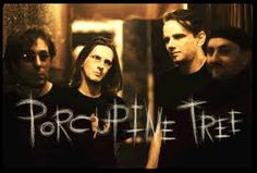 porcupine tree