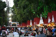 Festa do Colono Alemão, Bauernfest, Petropolis, RJ. #viagem #trip