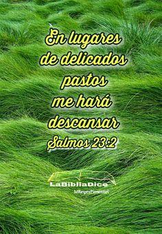 LaBibliaDice: Salmo 23 (2)
