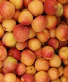 Blogroll - My Cute Baker We have SO MANY apricots we are bringing out Great-Grandmother's recipes! Peach, Bring It On, Fruit, Cute, Recipes, Food, Kawaii, Essen, Eten