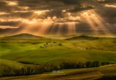 Under the Tuscan Sun by moharrim - Seeking Light In Nature Photo Contest