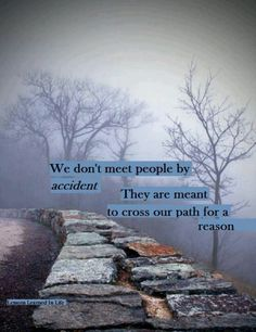 People come into our lives for a reason.